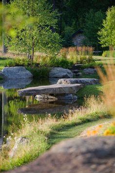 Pond, boulders, landscape