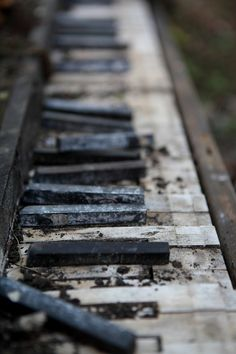 An old piano keyboard had somehow ended up down there by the tracks, apparently at the end of its road in life... no more music from those keys.