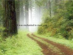 Enchanted #Taylorswift #Lyrics #quotes