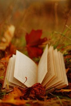 Fall in the leaves with a stack of books.