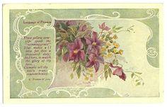 Victorian Language of Flowers Postcard Image