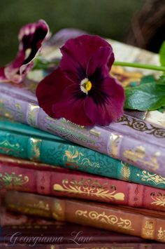 La plus grande aventure de l'être humain se déplace, Et le plus grand voyage que n'importe qui peut entreprendre C'est à l'intérieur de vous-même. Et le moyen le plus excitant à faire est de lire un livre, Pour un livre révèle que la vie est le plus grand de tous les livres, Mais il n'est pas très utile pour ceux qui ne savent pas lire entre les lignes Et savoir ce que les mots ne peuvent pas dire ... Augusto Cury