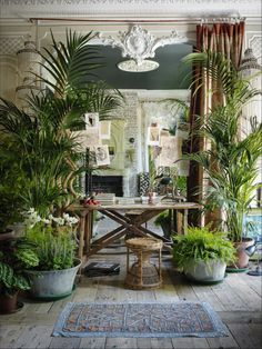 Sera of London --Bohemian Decor
