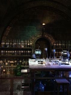 Estilo Harry Potter, Mundo Harry Potter, Theme Harry Potter, Harry Potter World, Harry Potter Hogwarts, Hogwarts Classes, Harry Potter Background, Slytherin Aesthetic, Photocollage