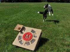 Fetch-O-Matic: Automatic BallLauncher