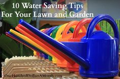 10 Water Saving Tips For Your Lawn and Garden