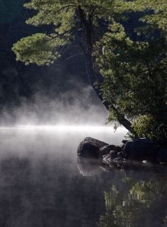 Temagami morning mist by Gordon B. Northern Girls, I Am Canadian, Just Beauty, Girls Life, Go Camping, Photographs, Photos, Four Legged, The Great Outdoors