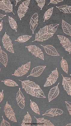 Rose gold hand drawn boho feathers hand drawn grey industrial concrete cement by Audrey Chenal wallp&; Rose gold hand drawn boho feathers hand drawn grey industrial concrete cement by Audrey Chenal wallp&; Gold Wallpaper Background, Rose Gold Wallpaper, Cute Wallpaper Backgrounds, Pretty Wallpapers, Flower Wallpaper, Feather Wallpaper, Trendy Wallpaper, Backgrounds Girly, Summer Backgrounds
