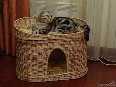 Домик и лежанка для кошки. Очень понравился этот двуфункциональный плетеный из натуральной лозы короб!