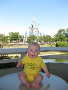 Adventures in Mommyhood: Disney World for Babies and Toddlers (Most useful guide of all the ones I've checked as of Feb 2013!)