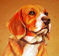 Pet Portrait by Karen Bash