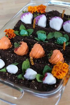 This is the dessert people won't be able to stop talking about! These life-like garden cakes are the cutest sweet treat you're ever going to see, and they're Garden Cakes, Edible Garden, Root Veggies, Popsugar Food, Glass Baking Dish, Candy Melts, Food Videos, Cupcake Cakes, Cupcakes