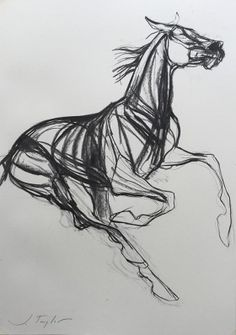 Supreme Portrait Drawing with Charcoal Ideas. Prodigious Portrait Drawing with Charcoal Ideas. Horse Drawings, Animal Drawings, Art Drawings, Drawing Art, Contour Drawings, Fantasy Drawings, Drawing Animals, Drawing Faces, Charcoal Sketch