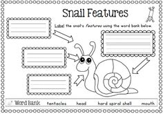 Spring has Sprung! Your Spring printables are all ready to go with 80 pages of black and white worksheets for K-1 students. http://www.teacherspayteachers.com/Product/Spring-Writing-Worksheets-Science-Reading-and-Writing-80-pages-632519