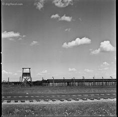 Auschwitz II-Birkenau    Kodak Tri-X 400