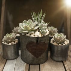 Our homegrown succulents bring life to this workshop-inspired succulent planter with heart! Rustic tin and beautiful succulents add a touch of farmhouse or...