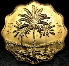 1981 IRAQ 5 Fils SCARCE GOLDEN TONED Palm Trees COIN in AMAZING SHAPE!