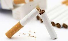 Algunos remedios caseros pueden apoyar al fumador cuando tiene deseos de dejar de fumar. Si aún no has dejado este mal hábito, no te pierdas de estos consejos y recetas naturales.