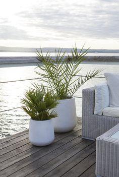 Palmer er stilig i fiberclay potter. Outdoor Rooms, Outdoor Gardens, Large Garden Pots, Scandinavian Garden, Cottages By The Sea, Backyard, Patio, Garden Inspiration, Exterior Design