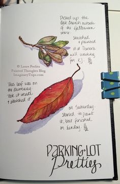 Painted Thoughts Blog: Deciding What To Sketch In Your Journal
