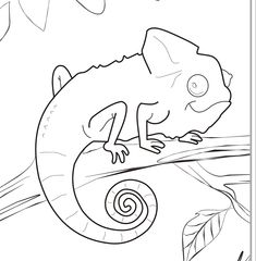 pin by coloring fun on animals pinterest chameleons