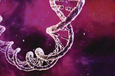 DNA database unlocks map to genetic disease