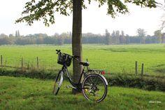 Biking the Garden of Versailles #bike #biking #Versailles #PalaceofVersailles #garden #GardenofVersailles #France #country