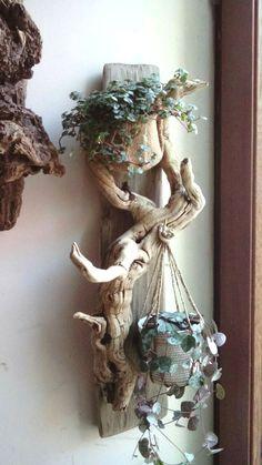 Suporte para suculentas to make a succulent terrarium pots Driftwood Planters, Driftwood Projects, Driftwood Art, Driftwood Ideas, Driftwood Sculpture, Diy Projects, Project Ideas, Garden Sculpture, Garden Crafts