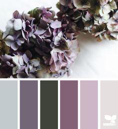 flora hues | design seeds | Bloglovin