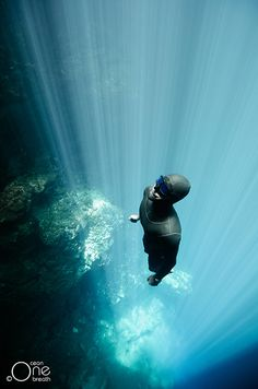 Eusebio Saenz de Santamaria ascending. Freediving, Freediving Photography in Cenotes, Mexico & Stock Photography