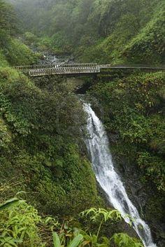 The road to Hana, Maui Hawaii