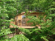 treehouse hotel Baumpalast, Germany At a tranquil place between oaks and beech trees lies the Treehouse Hotel Baumpalast. All Suites are equipped with. Hotel Europa, Treehouse Hotel, Travel Hotel, Camping, Germany Travel, Garden Bridge, Best Hotels, Pergola, Hotels