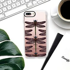 dragonfly transparent -