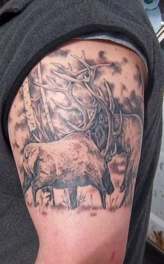 Bull Elk fighting/ wildlife tattoo
