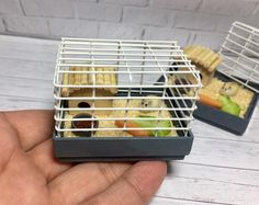 miniature dolls A miniature hamster with a cage. A hamster for a Dollhouse on a scale., As well as for Barbie dolls in scale. A hamster with a cage can be used as a decoration Miniature Crafts, Miniature Food, Miniature Dolls, Diy Dollhouse, Dollhouse Miniatures, Cage, Mini Doll House, Mini Craft, Polymer Clay Miniatures
