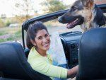 Vacation with Your Pets: Tips on Flying, Driving and Staying in Hotels with FurryFriends
