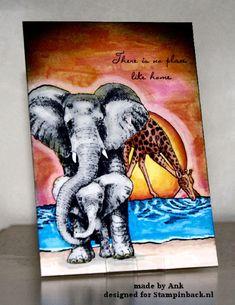 Zo in m'n nopjes met al die olifanten dat ik meer kaarten heb gemaakt dan dat ik blogdagen heb hier op het SB blog. Deze dus even tus...