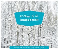 50 Things to do in Alberta in Winter. Everything from skiing and skating, to tobogganing, to maple syrup festivals, to soaking in hot springs and much more! Stuff To Do, Things To Do, 50th, Outdoors, Adventure, Big, Winter, Outdoor, Things To Make