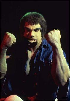 lou ferrigno as the hulk | Lou Ferrigno: Foto - El Increible Hulk