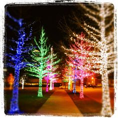 Awesome Christmas Lights in Fort Worth, Texas | Dallas Photoworks