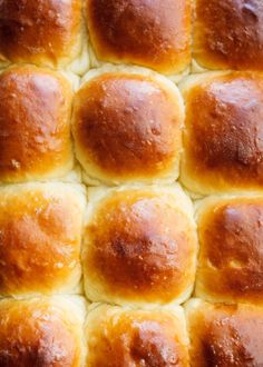 Soft, fluffy, and moist one hour dinner rolls recipe. These rolls have potato flakes in them to make them more tender. Perfect for Thanksgiving & Christmas! Whole Roast Chicken Recipe, Whole Roasted Chicken, Roast Chicken Recipes, Lemon Cream Sauces, Dinner Rolls Recipe, Spice Jars, Caramelized Onions, Sauce Recipes, Pizza Recipes