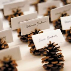 White and gold wedding colors are most often seen in winter weddings, but this color combination can be used anytime throughout the year to...