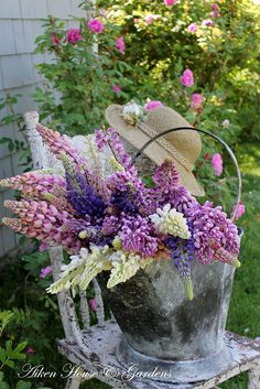 Beautiful Shades of Lavender Lupines on Shabby Country Chair