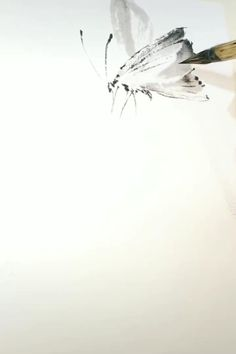 Chinese Painting Flowers, Japanese Ink Painting, Sumi E Painting, Japanese Watercolor, Japanese Art, Watercolor Paintings For Beginners, Watercolor Video, Watercolor Art, Chinese Art