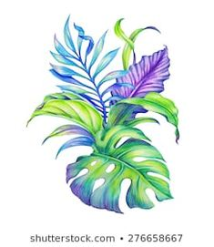 Similar Images, Stock Photos & Vectors of abstract tropical leaves and flowers, jungle plants, watercolor illustration isolated on white background - 246985852 | Shutterstock Tropical Leaves, Tropical Flowers, Watercolor Plants, Watercolor Art, Botanical Illustration, Watercolor Illustration, Jungle Flowers, Plant Tattoo, Plant Drawing