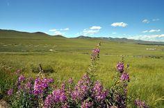 Gorkhi-Terelj National Park (Ulaanbaatar) - O que saber antes de ir - TripAdvisor