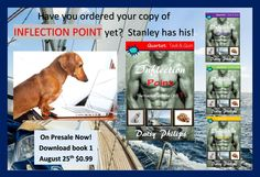 Now on presale at Amazon.com  Inflection point by Daisy Philips