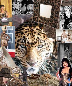 Leopard is hot ... As always! leopard