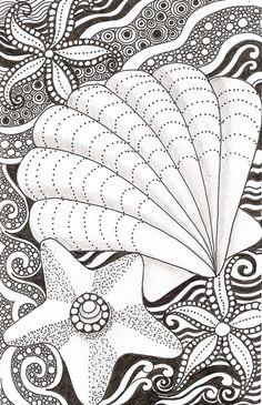 Shell and starfish | banar