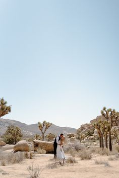 Wedding Anniversary Photos, Wedding Couple Photos, Wedding Couples, Couple Posing, Posing Couples, Joshua Tree Wedding, Joshua Tree National Park, Photo Tree, Photography Photos